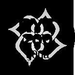 ryt-200,yukinobu ota,seed training,hyogo,amagasaki,osaka
