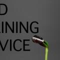Seed Training シードトレーニング ヨガ ピラティス タイ古式マッサージ 自宅出張 個人レッスン 尼崎 兵庫 大阪