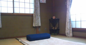 Seed Training,シードトレーニング,タイ古式マッサージ,リラクゼーション,癒し,尼崎,兵庫,大阪,Seed庵,