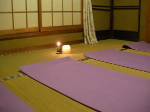Seed Training,シードトレーニング,yin,yoga,meditation,メディテーション,