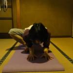 Seed Training,陰ヨガ,ヨガ,ポーズ,yin yoga,amagasaki,