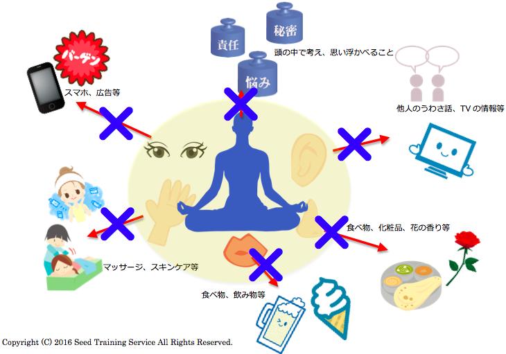 Seed Training 悟りの感覚図 ヨガ哲学 仏教 瞑想 メディテーション メンタル マインドフルネス プラティヤハーラ 制感