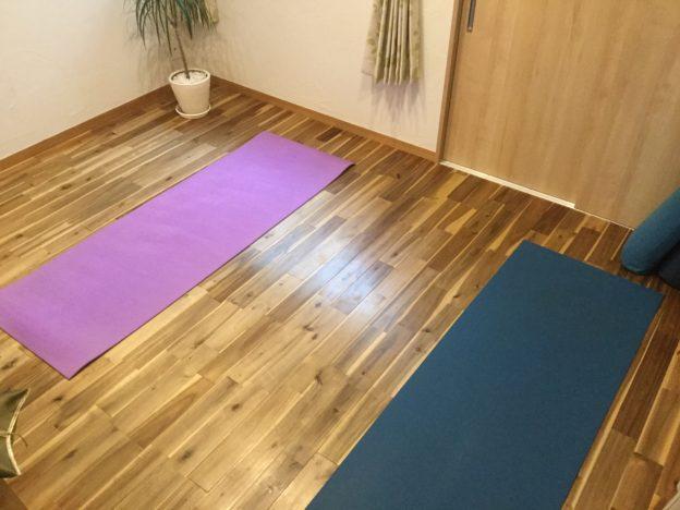 Seed Training シードトレーニング ヨガ ハタヨガ 陰ヨガ Yoga Yin Yoga 初心者 体験 尼崎 兵庫 大阪 西宮 伊丹 宝塚 呼吸法 瞑想 メディテーション エネルギー プラナ